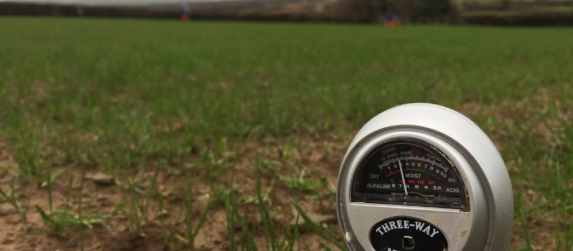 testing the acidity and moisture levels in the soil